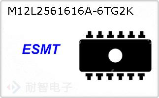 M12L2561616A-6TG2K