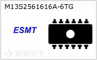 M13S2561616A-6TG